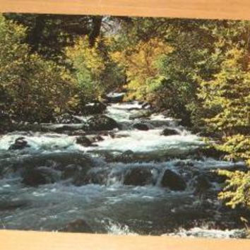 Vintage Eastern High Sierra California Postcard