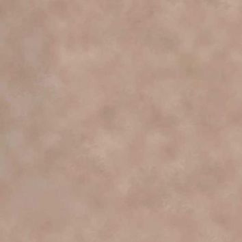 PRINTED OLD MASTERS CREAM BACKDROP 5x6 - LCPC2543 - LAST CALL