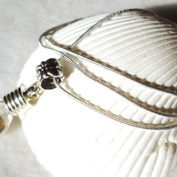 Vial necklace, gold round is encased in vial necklace on sterling silver plated chain