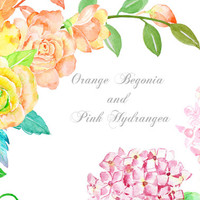 Watercolor Clipart - Orange Begonia and Pink Hydrangea printable instant download