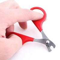 Pet Supplies Red Small Dogs Pet Nail Clippers Cat Nail Clippers Pets Scissors in Cat Grooming Products 8cm Home Supplies