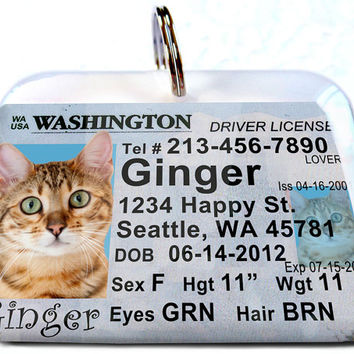 Washington driver license Personalized Custom ID Tags for dogs and cats Double Sided pet tags