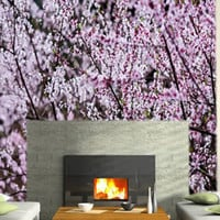 Cherry Blossom wall papers :  Dezign With a Z, Reusable wall decals