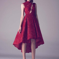 Modest Wine Red Lace Short Plus Size Cocktail Dresses High Low Party Dress 2016 Homecoming Dresses