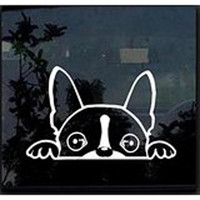 "NI118 Boston Terrier Peeking Over 6"" White Vinyl Car Truck Decal Sticker Dogs Rescue Adopt Animals Cute Funny Adorable"