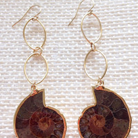 LIMITED EDITION Ammonite Earrings