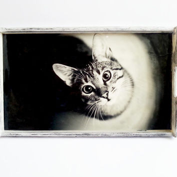 Black and white wooden tray with cat photo shabby chic  hand painted gift idea for cats lovers