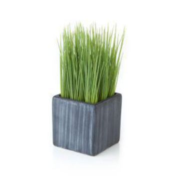 Mini Potted Artificial Grass