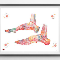 Ankle bones watercolor print medical art ankle ligaments and tendons poster orthopedic surgery skeletal system human ankle  wall decor [31]