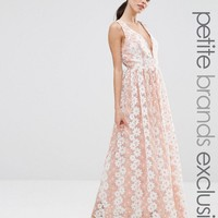 True Decadence Petite | True Decadence Petite Premium Floral Lace Plunge Maxi Dress at ASOS