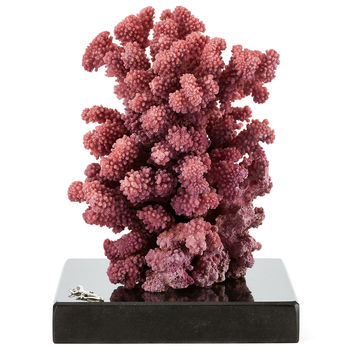Purple Lace Coral on Marble & SS Base, Coral, Barnacles, Shells & Starfish
