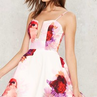 Grin and Flare It Floral Dress