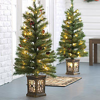 Home Accents® Set of Two 3.5-ft. Pre-Lit Porch Trees - Belk.