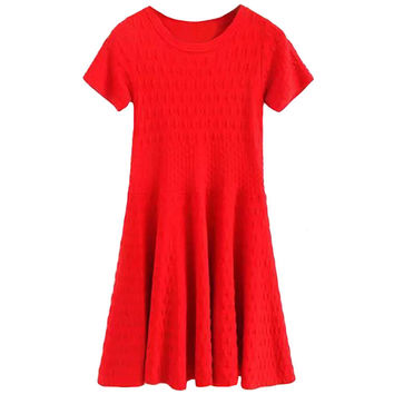 Short Sleeve Embroidered A-Line Mini Pleated Dress
