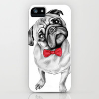 Percy Pug iPhone & iPod Case by 13 Styx