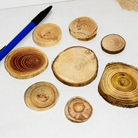 Handmade jewelry findings, collection of wood jewelry supplies. Assorted mixed natural wood. Jewelry supply accessories, for jewelry makers.