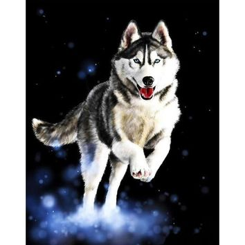 Frameless Huskies Animals DIY Painting By Numbers Hand Painted Oil Painting Modern Wall Art Picture For Home Artwork 40x50cm