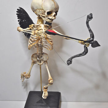 Cupid Skeleton Display