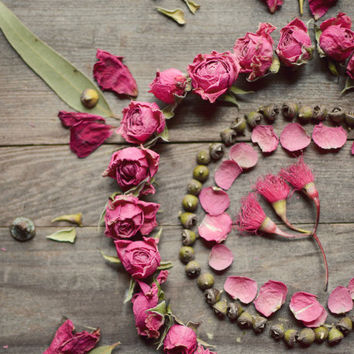 "Still life photography, dried roses, flower photography, pink flower petals, rustic wall art, wood, country, seed pods 8x10 - ""Rose Mandala"""