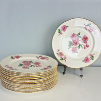 Vintage Set of 12 Luncheon Plates Homer Laughlin Apple Blossom Liberty Pattern, 1940s China Pink Flowers Gold Plates, White Gold Dinnerware