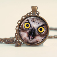 Pendant with Chain - An owl