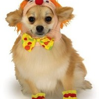 Rubies Costume Halloween Classics Collection Pet Costume, Small, Clown Headpiece with Cuffs
