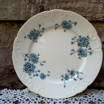 """IRONSTONE BLUE FLORAL Side Plate, 8"""", Blue Transferware, Millais, Colonial Potteries, Stoke England, Serving, Embossed Relief"""