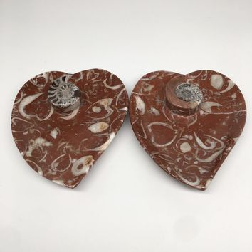"""2pcs,6.25""""x5.3"""" Ammonite Fossils Heart Plates Dishes Red Marble @Morocco,MF1355"""
