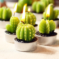 6pcs. Mini Cactus Candles tealight candles  fruit Plant potted  Paraffin Wax  Home Decor event party supplies