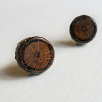 Laurel Oak Wood Stud Earrings - Autumn Fall Fashion - Natural Wood Jewelry - Eco-Friendly
