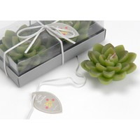 Set of 2 Succulent Plant Small Candles | YourFrenchGift.com