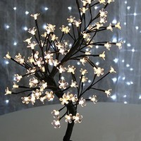 Bonsai Tree 23 Inch - 96 Warm White LED'S - BOC Select