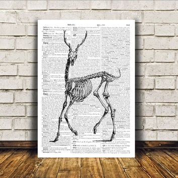 Macabre art Deer skeleton poster Modern decor Dictionary print RTA5