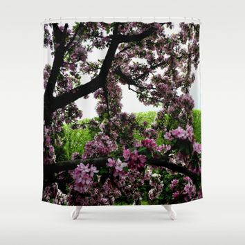 Cherry Blossoms Shower Curtain by UMe Images