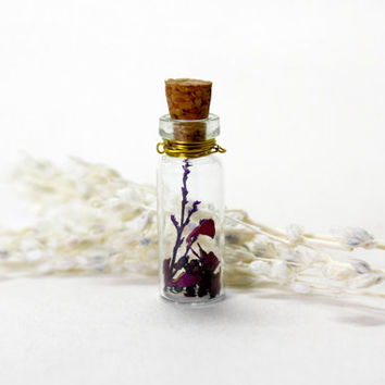 Glass Bottle Necklace, Natural Dried Flower, Dried Rose, Purple Flowers, Gold Chain