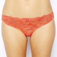 Mimi Holiday Brandy Snap Lace Classic Knicker -