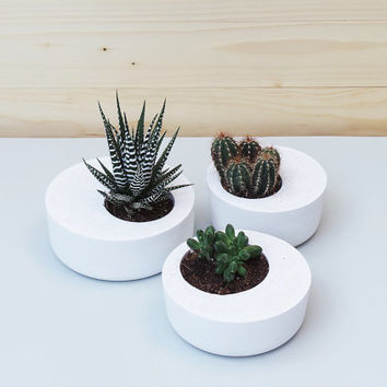 Set of 3: White Concrete Planters, Geometric Concrete Planter, Concrete Planters,  Minimalist style. Planter, Concrete planter