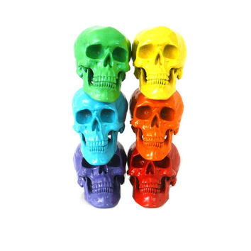rainbow skull set, faux taxidermied, skulls, rainbow colors, spectrum, gay pride, home decor