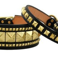 Black and Gold Studded Dog Collars