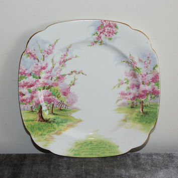 Royal Albert England Blossom Time Dinner Plate, Fine Bone China, Porcelain Plates, Square Plates