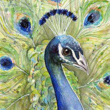 Peacock Painting | Watercolor Art Print by Olechka
