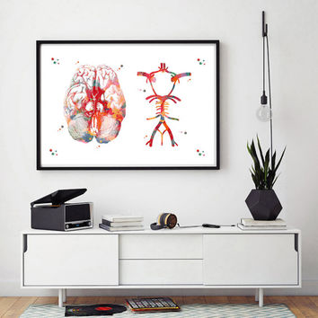 Circle Of Willis watercolor print anatomy art brain cerebral arterial circle poster brain medical art poster brain neurology wall decor
