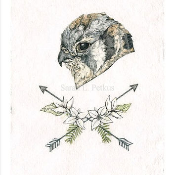 Hawk Arrows Art Print - 8 x 10 inch bird art reproduction