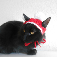 Knit Cat Santa Hat - Cat Christmas Costume - Pet Christmas Costume - Cat Photo Prop - Kitten Santa Hat - Knit Santa Hat for Cats