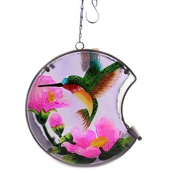 Home & Garden HUMMINGBIRD PAINTED BIRD FEEDER Glass Outdoor Decor Nature 11689