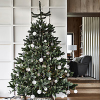 Symons Nordmann Fir Christmas Tree - 7.5ft | Christmas Trees | The White Company UK