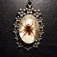 Spring Ghost Spider Specimen in Resin Bubble Cameo Necklace