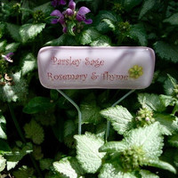 Parsley Sage Rosemary & Thyme Garden Stake by Design4Soul