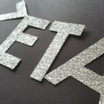 Zeta Tau Alpha Bitches silver glitter sorority greek banner photo prop booth decoration soros bedroom home decor  profanity curse cuss