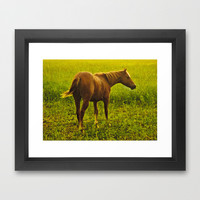 Brown Horse in the Field Framed Art Print by Danflcreativo